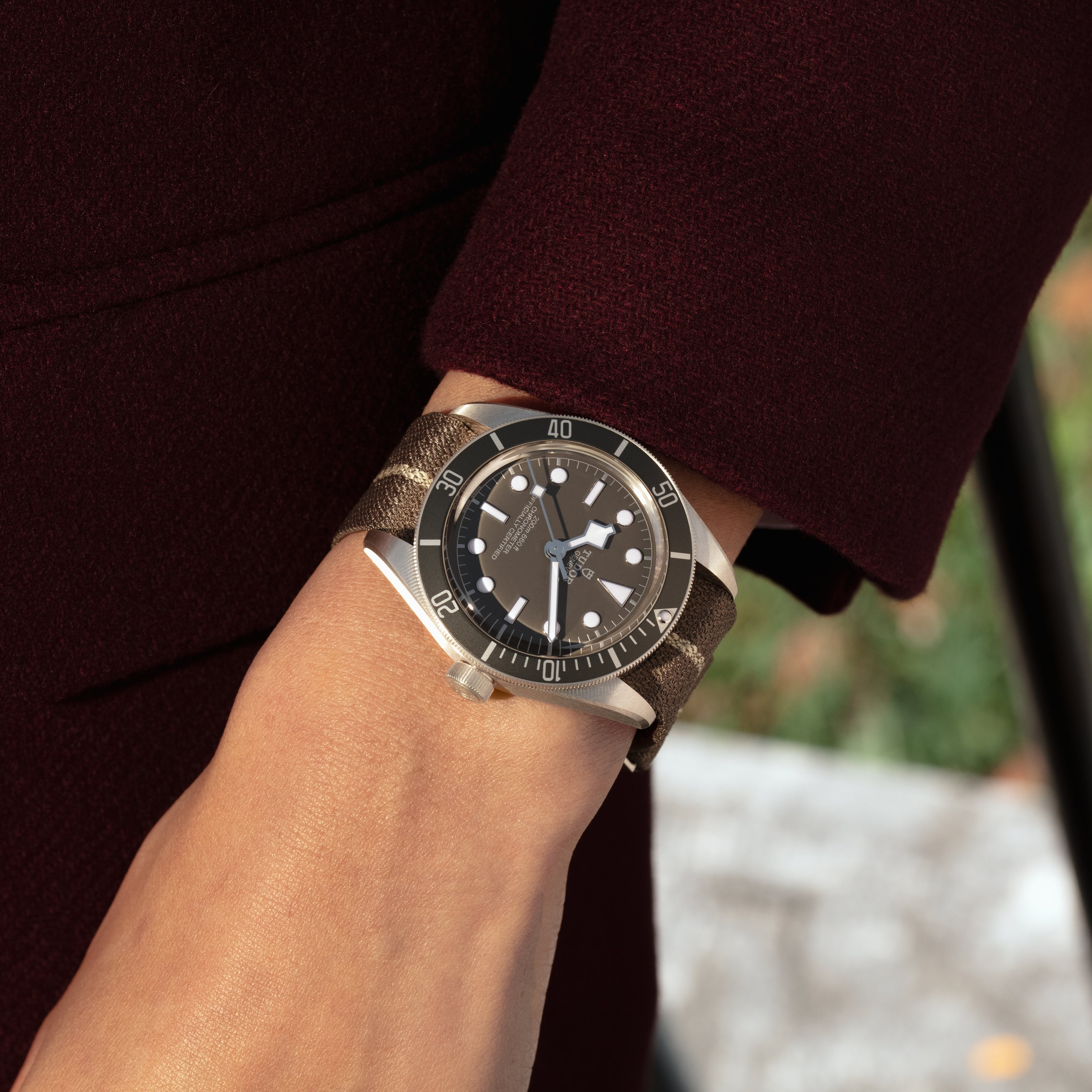 The new Tudor Black Bay Fifty-Eight in silver.